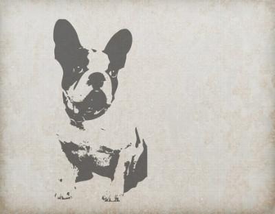 dog-220302_960_720