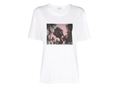 SAINT LAURENT  パームツリー Tシャツ