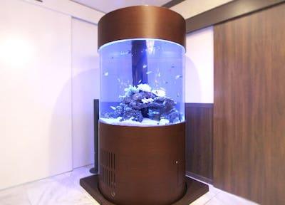 円柱水槽・丸型水槽